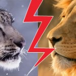 Comparatif de rapidité Snow Leopard Vs Lion